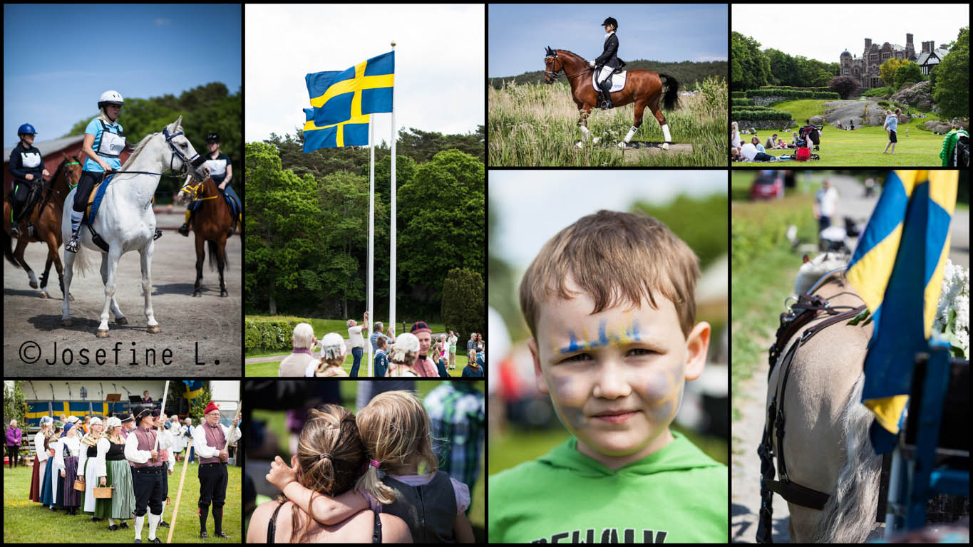 tjolöholm nationaldag 2013collage